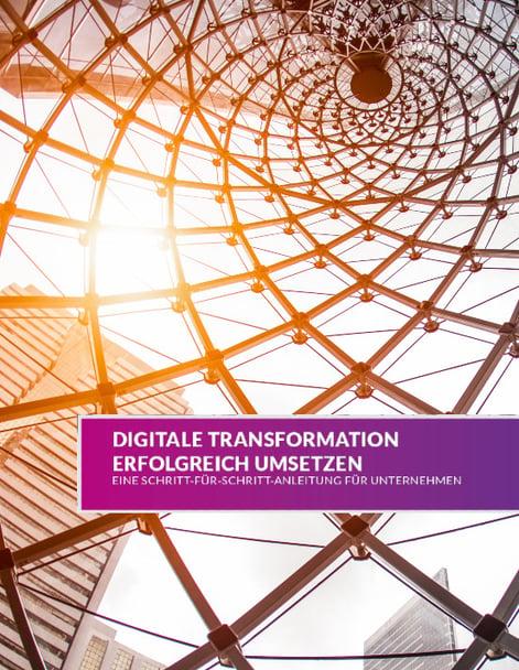 Preview2_Leitfaden_Digitalisierung